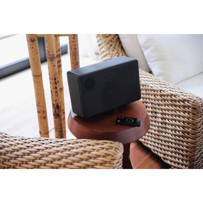 Blue Aura WS10i Wireless Stereo Loudspeaker – Black
