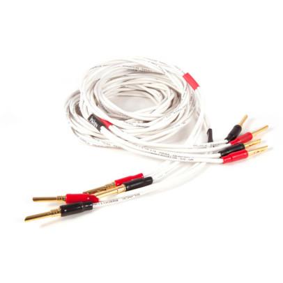 Black Rhodium Twist Pre-Terminated Speaker Cable – 2m